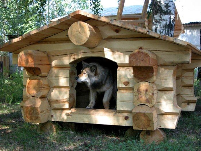Будка для собаки (11)
