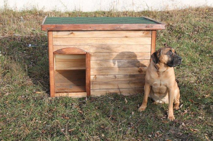 Будка для собаки (40)