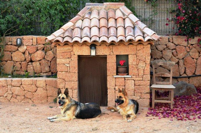 Будка для собаки (48)