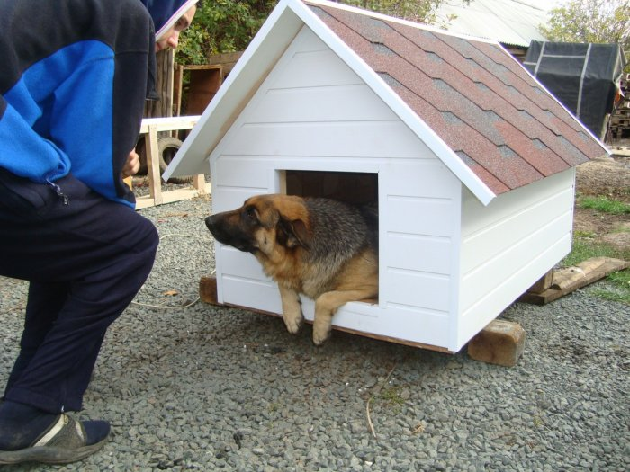 Будка для собаки (69)