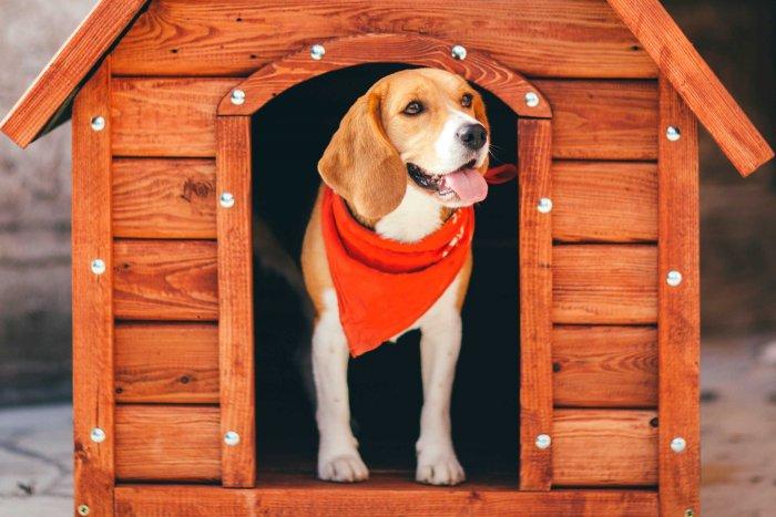 Будка для собаки (9)