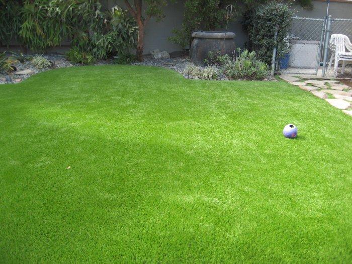 Газонная трава (16)