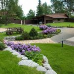 Декоративные кустарники для дачи (9)