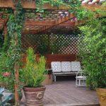 Обустройство двора частного дома (1)