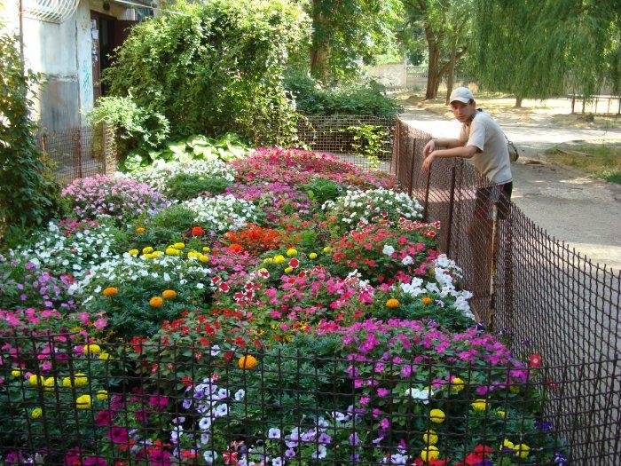 Обустройство двора частного дома (24)
