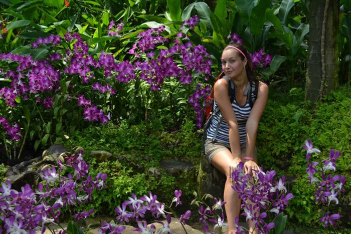 Орхидея (83)