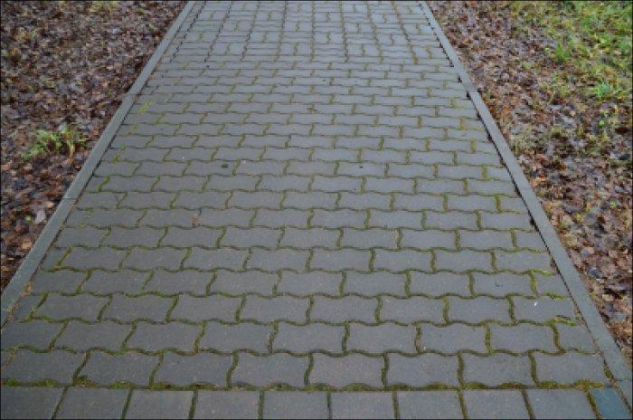 Укладка тротуарной плитки (85)