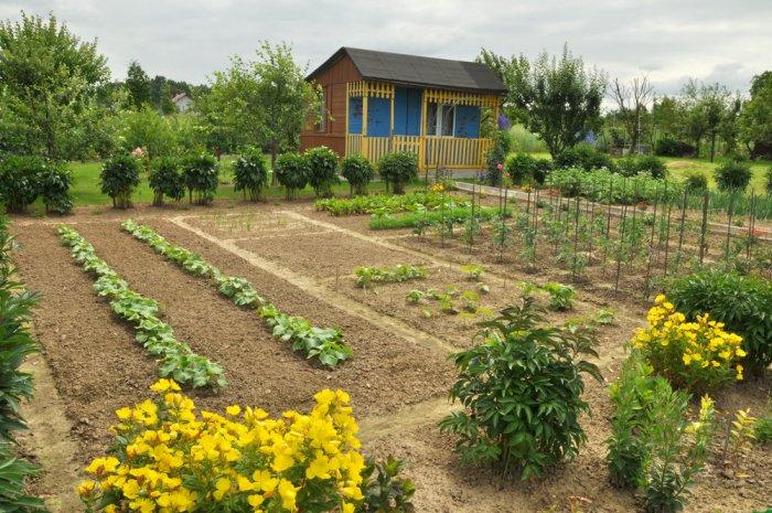 Сельскохозяйственное зонирование