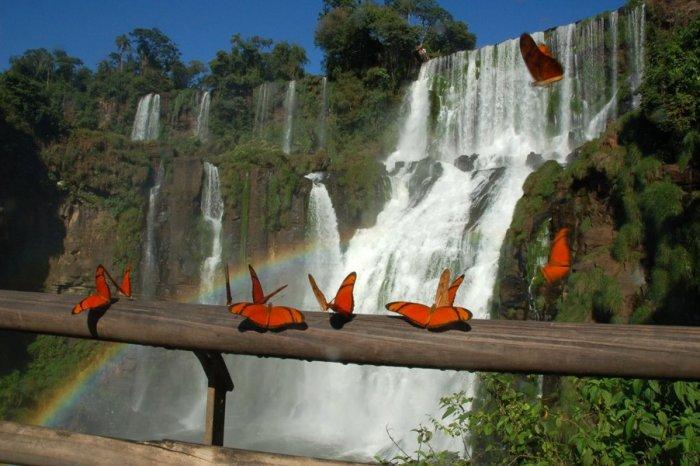 Водопад-Игуасу-1