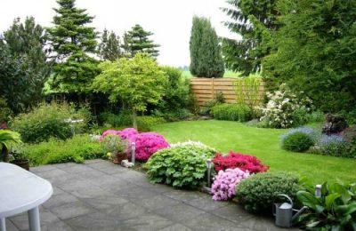 Обыкновенный тип газона в саду
