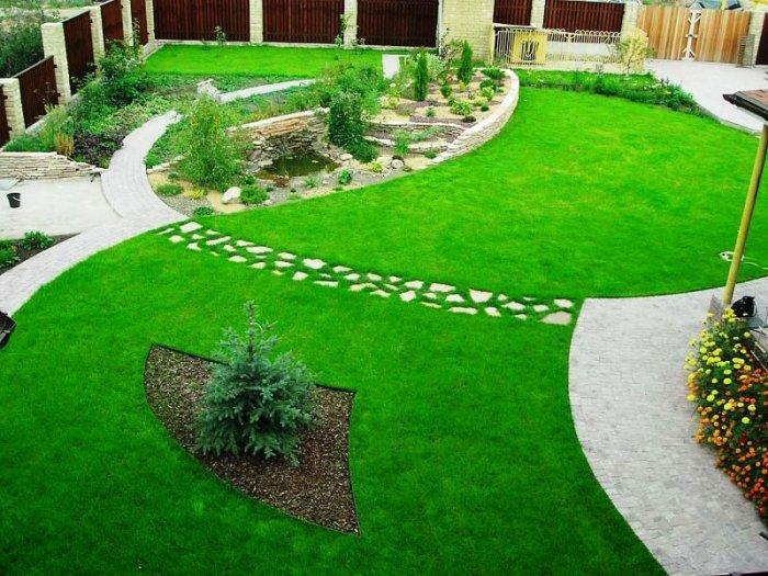 Озеленение участка газоном