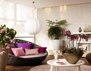Комнатные цветы в домашнем интерьере
