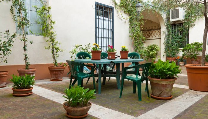 8patio potted plants