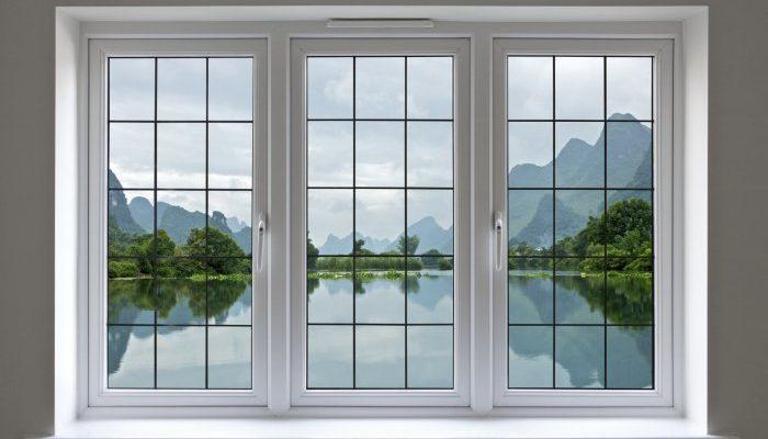 window 6 31212008